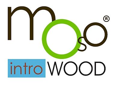Moso bambusz